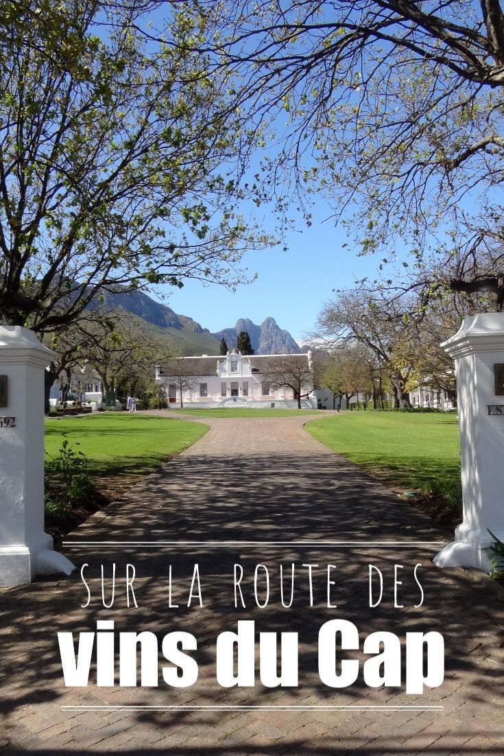 L'Afrique du Sud possède 110 000 hectares de vignes, soit environ 10% de la surface française, et est classée 9ème dans la production de vin au niveau mondial. Comme mentionné dans l'article précédent, la province du Cap produit la majeure partie du vin sud-africain (à l'exception du Cap Nord), étant donné le climat dont elle dispose ; par conséquent, on y retrouve tous les producteurs de vin du pays.  La région est également réputée pour être une des plus belles régions viticoles au monde…