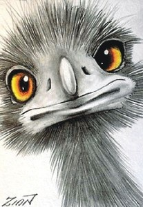 "Aceo  Original    ""EMU #4""            pencil  ZINN"
