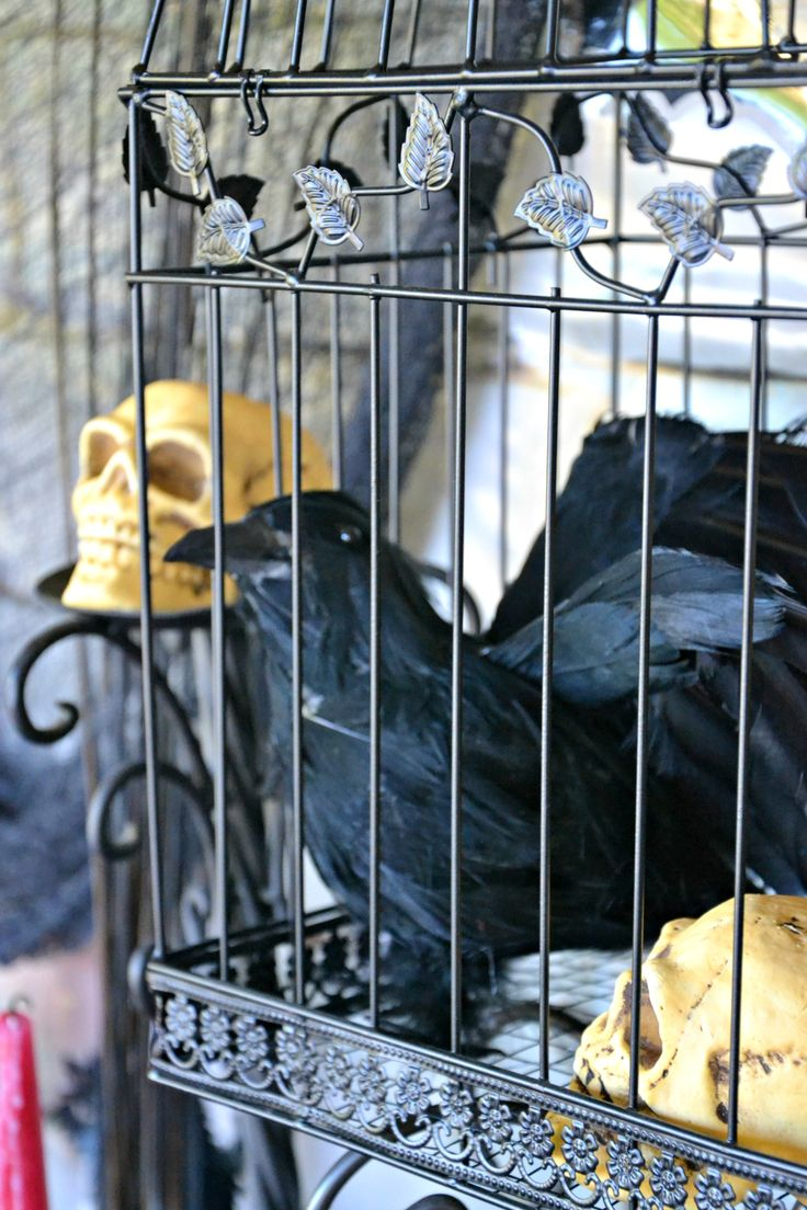 31 best images about Spooky Soiree Ideas on Pinterest | Party ...