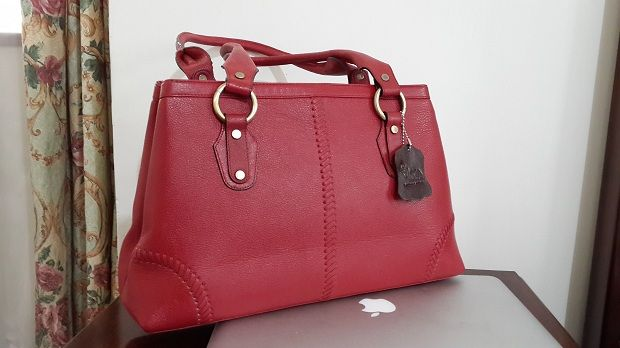 PROFESSIONALZZZ  Executive Style  Bag For Daily Use  http://www.galzbestfriend.com/product_info.php?products_id=61