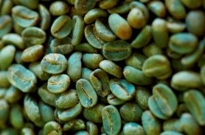 How to Use Green Coffee to Stimulate Weight Loss