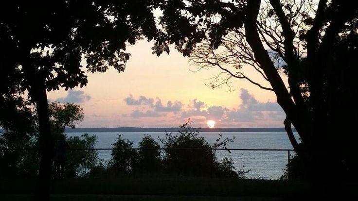 Kelly Matthews, an Australian tourist, took an image that resemble the map of Australia in Darwin Esplanade. (Facebook)