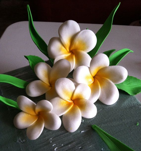 Check out these gum paste plumerias....a great addition to your cake for like a Hawaiian theme cake or wedding cake.  These are made out of white gum paste and then airbrushed with a yellow edible paint and pearl dusted to give them a beautiful shine.  The whole flower is totally edible.  And the great thing about these flowers is that no two are alike.  They are hand made and hand formed.  No cutters were used to make these awesome flowers.