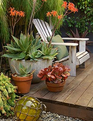 : Plants Can, Adirondack Chairs, Succulents Can, Outdoor Rooms, Modern Gardens Design, Courtyards Ideas, Succulents Gardens, Outdoor Spaces, Patio Plants