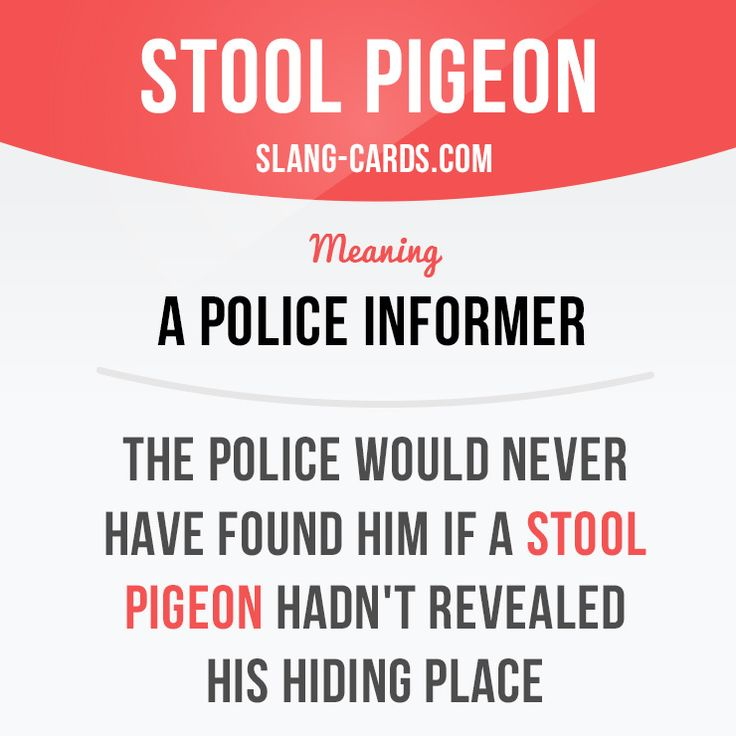 """Stool pigeon"" is a ​police informer.  Example: The police would never have found him if a stool pigeon hadn't revealed his hiding place"