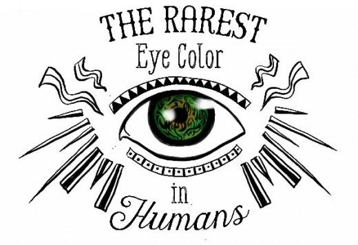 Ever wonder what the rarest eye color in the world is? Find out the most unusual eye colors and what causes them.