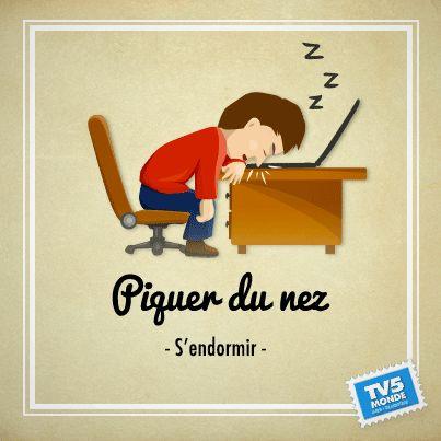 """Piquer du nez: s'endormir. On utilise cette expression pour décrire une personne qui a un grand besoin de dormir et qui ne peut pas résister.  On ne l'utilise pas pour une personne qui s' endort allongée, dans son lit. Exemple : """"je suis tellement fatiguée que je pique du nez sur mon livre"""""""