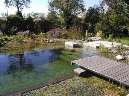 1000 images about piscinas biol gicas algunos ejemplos for Piscinas biologicas