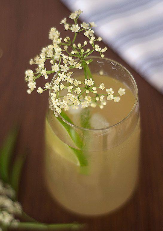 Bebida medicinal y deliciosa de-sauco-