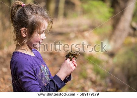 Young school girl watching the toads (bufo bufo) on wet meadow during the spring in homeschool