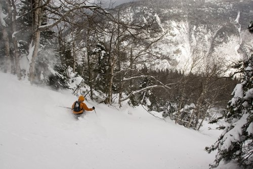 Untracked pow and open glades? What more could you ask for? Stowe, VT. #Skiessentials #Stowe