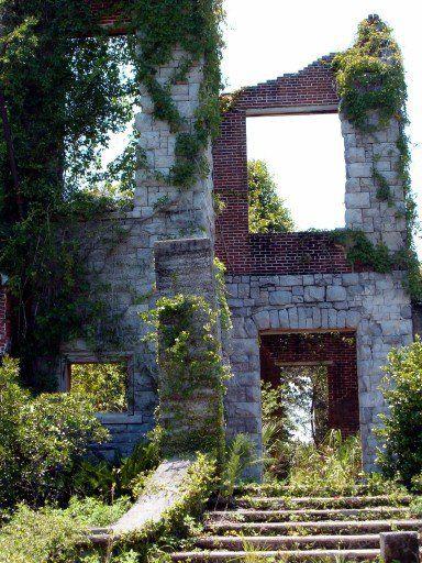 Chevaux - Géorgie - Dungeness Ruins - Voici les ruines d'un ancien pavillon de chasse. Une demeure qui a changé de mains à plusieurs reprises entre 1736 et 1959. Aujourd'hui, elle est détenue par le National Park Service et investie par la faune locale.