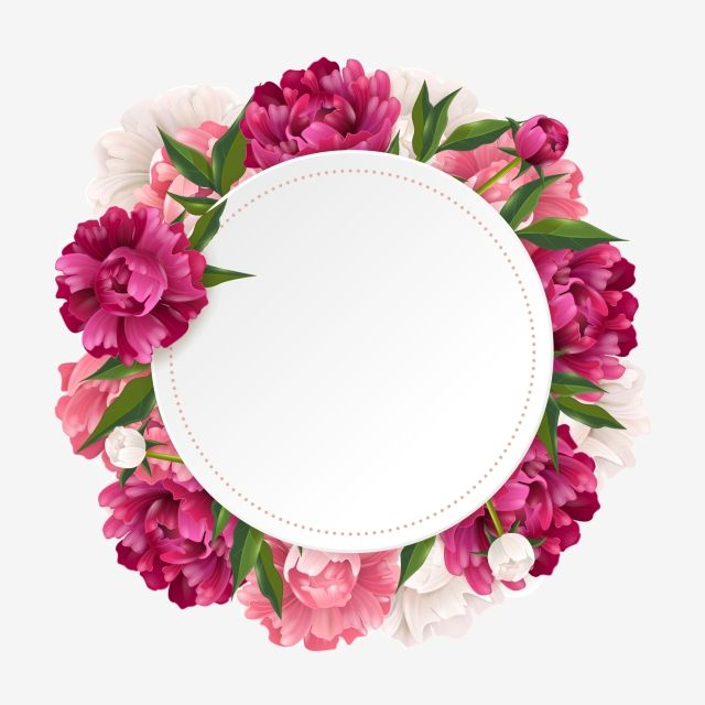 아름다운 꽃 틀 Ilustracoes Florais Molduras Para Fotos Montagens Logotipo Floral
