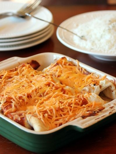 Chicken enchiladas an easy to make dinner recipe lisa for One dish wonders recipes