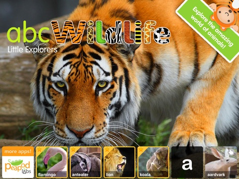 ABC Wildlife-Words about animals with pictures, sounds and videos for kids