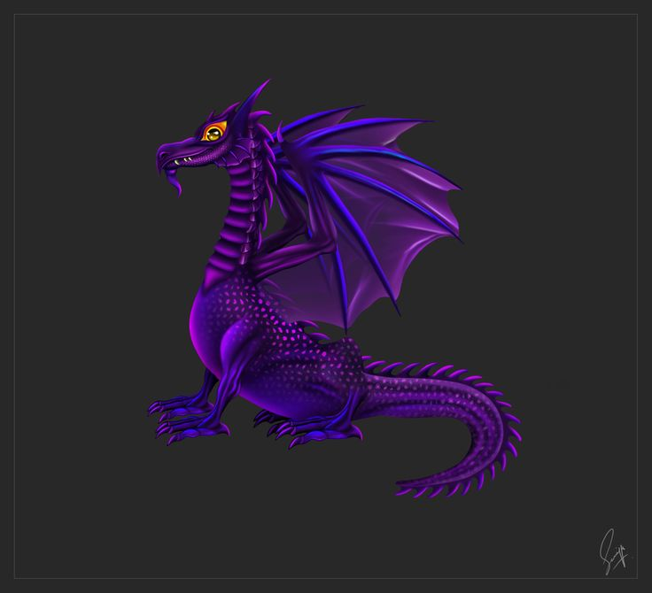 Dragon by Saniya Aslam