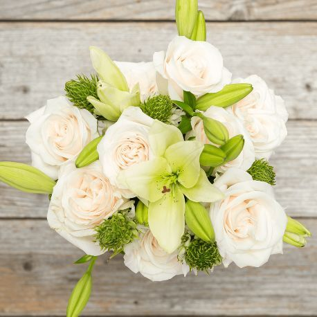 """Catalog: Shop All 