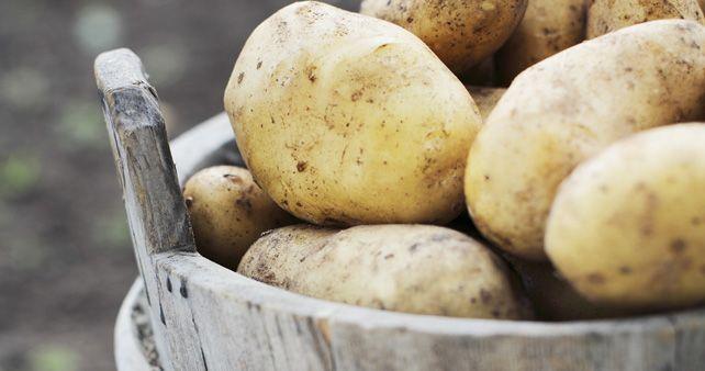 Delle patate non si butta via niente!  http://www.greenmagazine.it/delle-patate-non-si-butta-via-niente/
