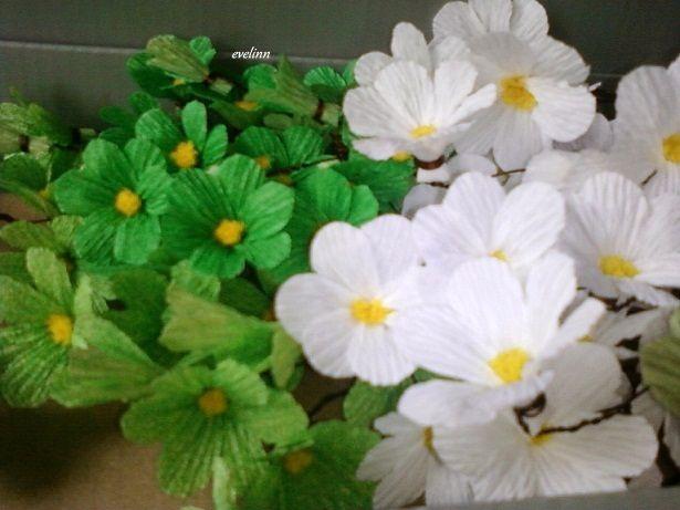 kwiatki z krpiny