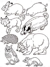 "Put the animals in the Mitten...free printable by Jan Brett to go with her book, ""The Mitten""."