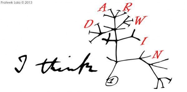 Resultado de imagem para arvore filogenetica de darwin