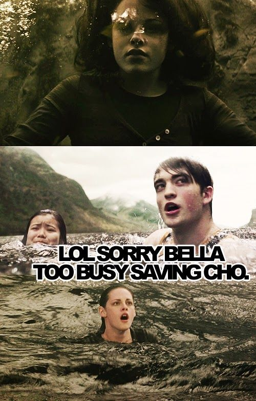 Harry Potter vs. Twilight. Cho vs. Bella :P