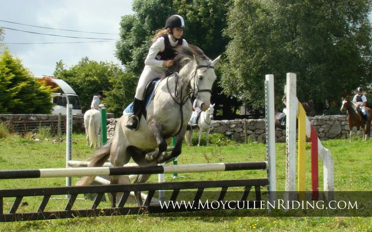 Horse riding lessons at Moycullen Riding Centre