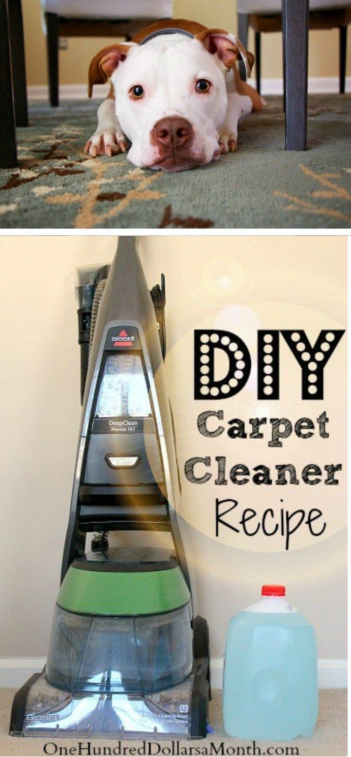 Tips for Steam Cleaning Carpets, Carpet Cleaner Recipe,  Carpet Cleaner Recipe for Pets, DIY Carpet Cleaner,