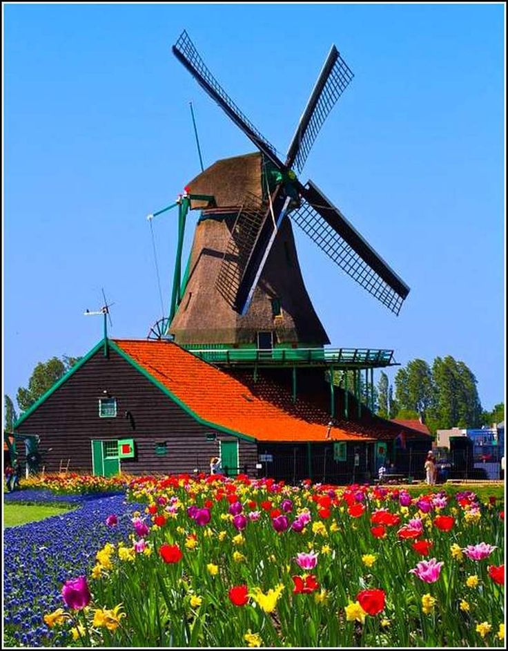 Beautiful Dutch landscape... For more information about us, check out our website: http://www.continental-industrie.com