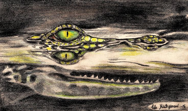 Crocodile by sheetah.deviantart.com on @DeviantArt