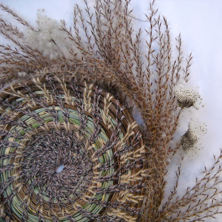 Coiled grasses etc by Sarah Woodrow