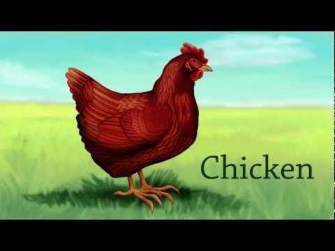 Farm Animals | Kids animals | Zoo animals (for preschool and kindergarten kids) - YouTube