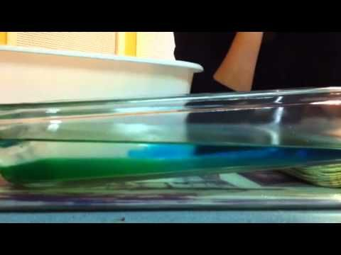 Ocean Current Salinity Experiment