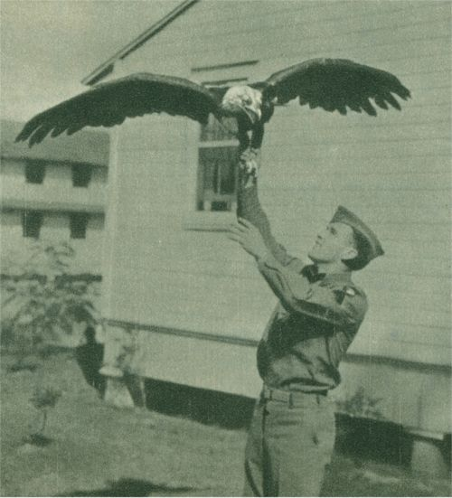 WWII A member of the 101st Airborne with their mascot, Young Abe, at Fort Bragg, Fayetteville, NC.