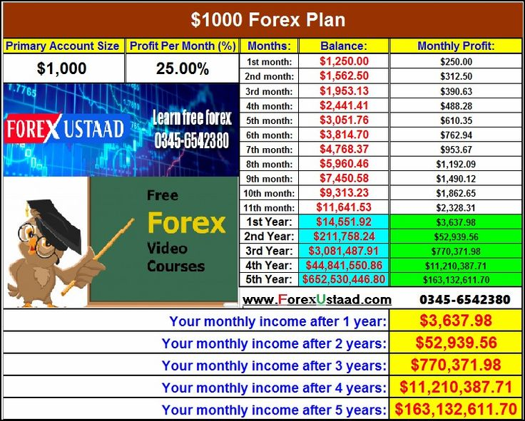 18 best forexustaad images on Pinterest Bear, Bears and Career - forex broker sample resume