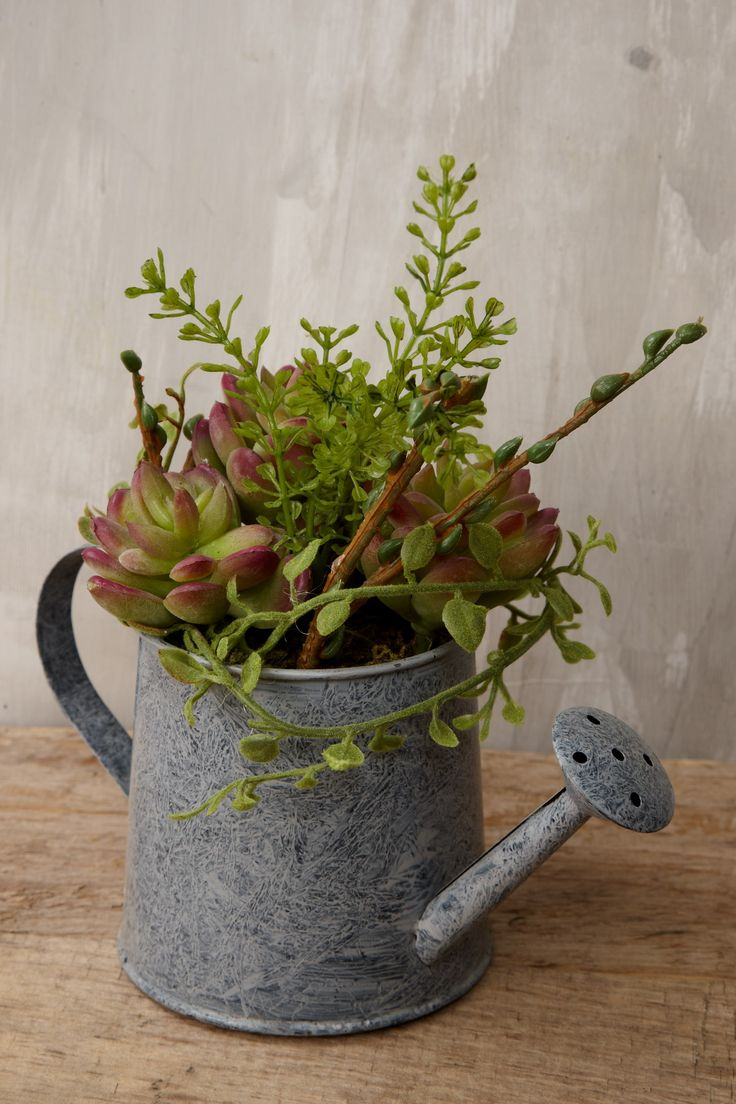 Watering Can with an assortment of faux green and burgundy succulents