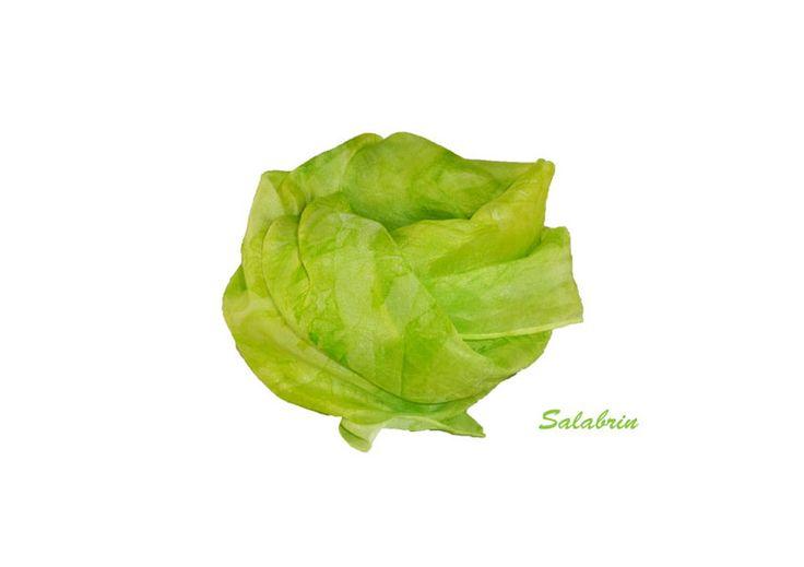 Seidenschals - Schal hellgrün - ein Designerstück von Salabrin bei DaWanda