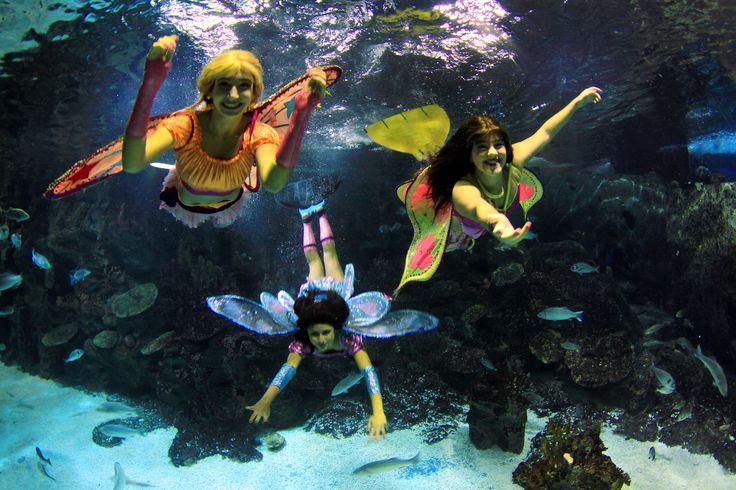 Wİnx Fairies underwater show  @Turkuazoo Akvaryum Aquarium