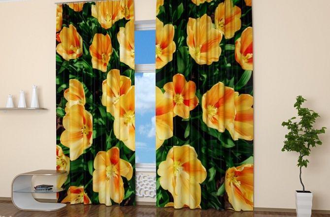 Фотошторы для гостиной: Голландские тюльпаны