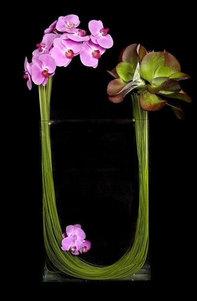 Ovando Floral Design