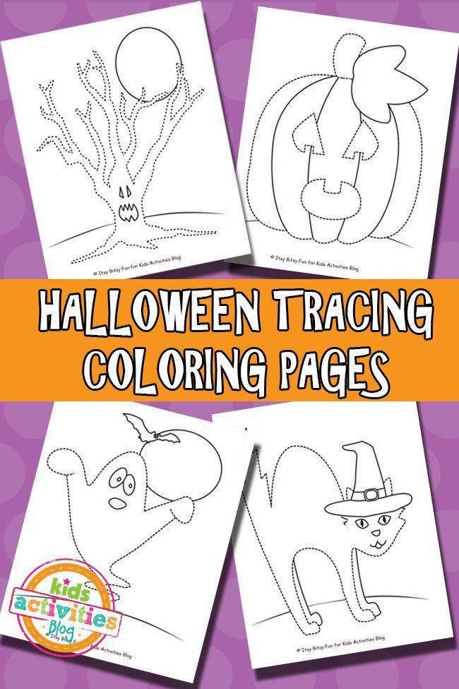 137 best HalloweenThanksgivingFall