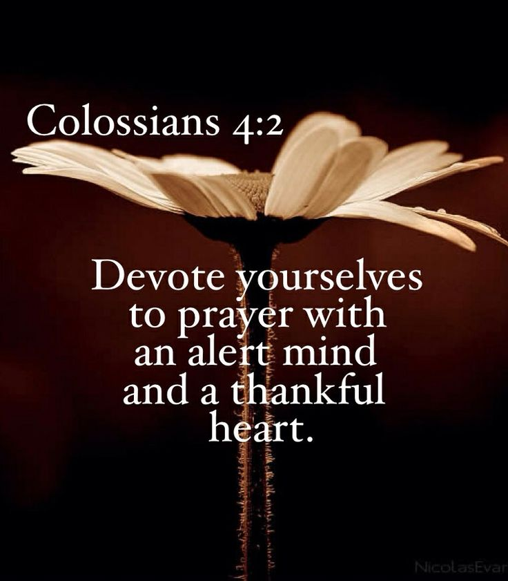 (6) Colossians 4:2 | Devote yourselves to prayer with an alert mind and a thankful heart.
