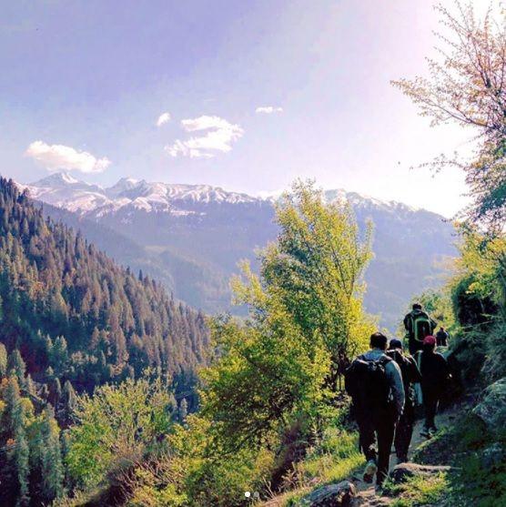Hiking back to Barsheni from Kheerganga through the Mountain fields. This trek was refreshing! #travel #traveling #traveller #trekking #camping #hiking #hikingadventures #adventure #adventuretravel #himalayas #himachal #himalayantrek #khirganga #kasol #landscapes #naturephotography #photographytour #nature #instadailyphoto #india #instadaily #picoftheday #boutindia