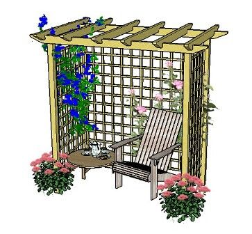 Pergola romance:  a lovely seated arbour with trellis and climbing plants.