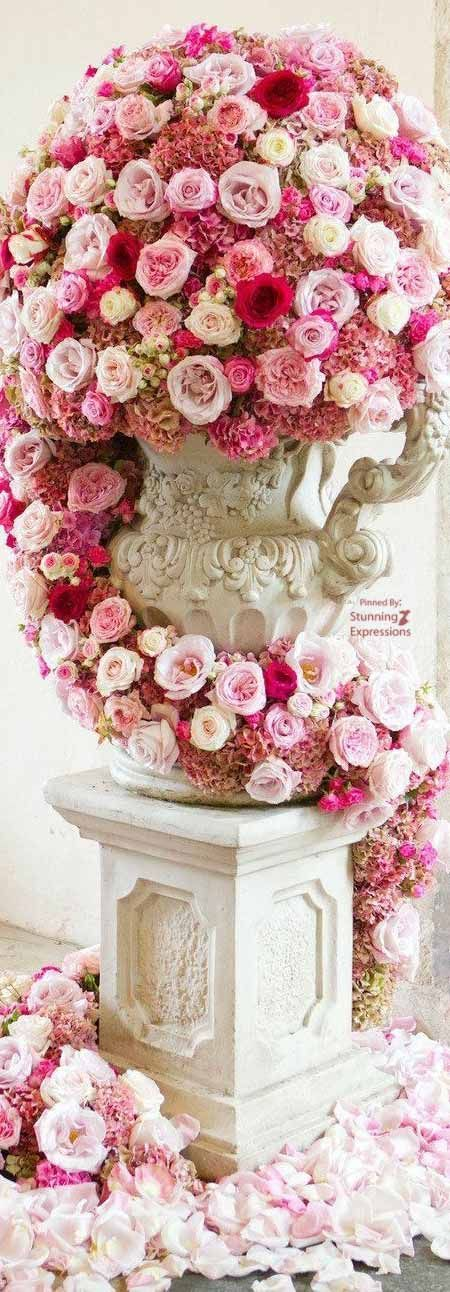 211 best Flowers never fail to surprise images on Pinterest | Floral ...