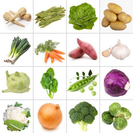 The Vegetables We Eat Bee-Bot Activity Mat