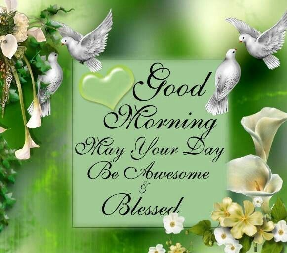 Good Morning May Your Day Be Blessed And Awesome good morning good morning quotes positive good morning quotes inspirational good morning quotes beautiful good morning quotes good morning quotes for friends good morning love quotes best good morning quotes winter good morning quotes good morning blessings quotes