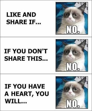 Grumpy cat.. How I feel about those Facebook pictures that say if you don't like it some one will murder you...