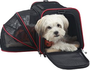 Top 5 Best Airline Approved Pet Carriers http://www.catsonyards.com/product-category/carriers-strollers/