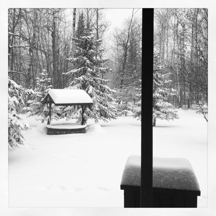 Winter wonderland #GILOVEMANITOBA